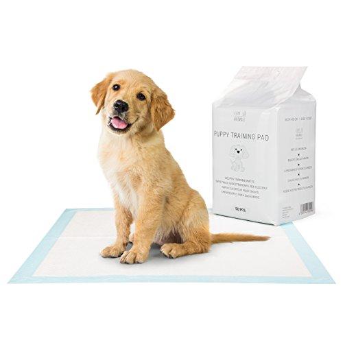 Everanimals, Tappetini di addestramento per cuccioli, Igienici Assorbenti per Cani, Misure 60 x 60 cm, 50 pezzi