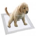 Tappetini Assorbenti Per Addestramento Cuccioli, 100 5 Extra GRATIS | 60 cm x 60 cm Nuove Dimensioni Super Assorbenti | Questa Nuova Soluzione Escl...